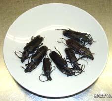 カミキリムシのホイール焼き