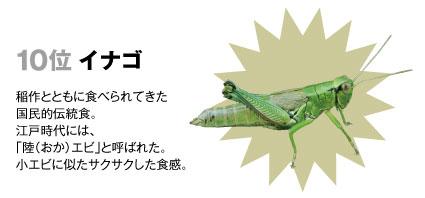 10 イナゴ:稲作とともに食べられてきた国民的伝統食。江戸時代には「陸(おか)エビ」と呼ばれた。小エビに似たサクサクした食感。