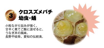 3 クロスズメバチ【幼虫・蛹】:小粒ながら旨みが強く、甘辛く煮てご飯に混ぜると、うなぎ丼の風味。長野や岐阜、愛知の伝統食。