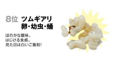 8 ツムギアリ【卵・幼虫・蛹】:ほのかな酸味、はじける食感、見た目は白いご飯粒