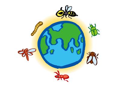 食糧としての昆虫食